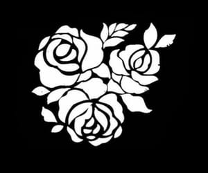 roses, overlays, and black and white overlays image