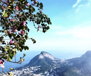 brasil, love, and nature image