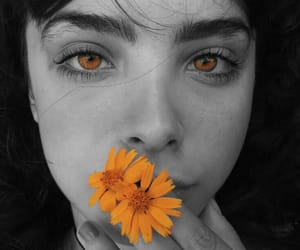 daisies, eyes, and flower image