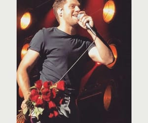 flower, flowers, and flicker tour image