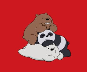 ice bear, ursos sem curso, and panda image