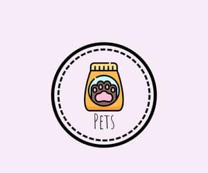 highlight, pets, and portada image