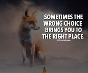 the right place and the wrong choice image