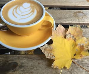 autumn, coffee, and yellow image
