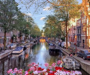amsterdam and flowers image