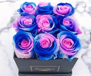 beautiful, box, and flowers image