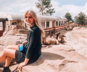 adventure, animals, and blonde image