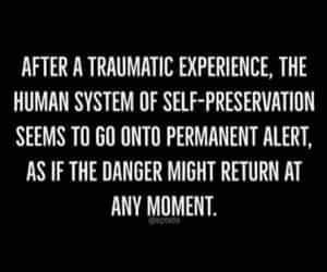 quote, soldiers, and trauma image