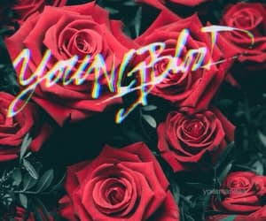 wallpaper, youngblood, and 5sos image