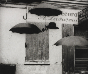 umbrella, black and white, and photography image