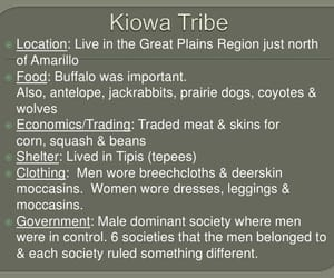 tribe, facts, and texas history image
