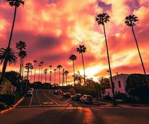 amazing, palms, and sky image