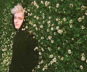 troye sivan, aesthetic, and beautiful image