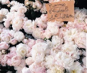 flowers, pink, and french image