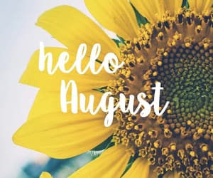 August, girasol, and 🌻 image
