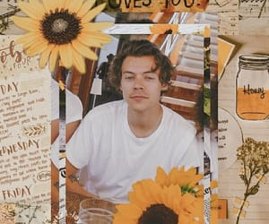 Harry Styles, sunflower, and wallpaper image
