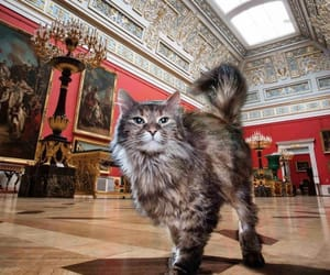 animal, architecture, and art gallery image