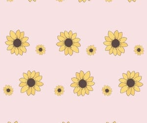 wallpaper, pink, and sunflower image