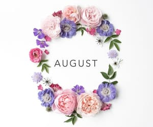 August, summer, and flowers image