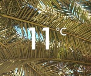 beach, goodmorning, and 11°c image