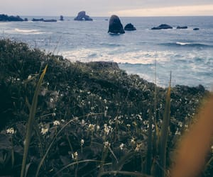 nature, photography, and sea image
