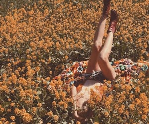 flower, relax, and vintage image