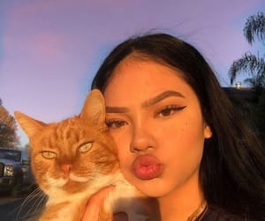 cat, girl, and icon image