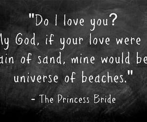 princess bride, quotes, and love image