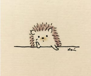 drawing, hedgehog, and cute image