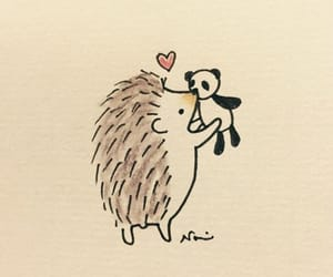 drawing, heart, and hedgehog image