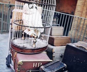 aesthetic, suitcase, and hogwarts image