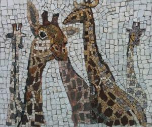 animals, freedom, and giraffe image