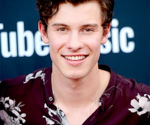 hq, tumblr, and shawnmendes image