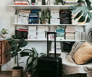 books, chair, and plants image