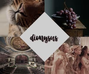 aesthetic, dionysus, and edit image