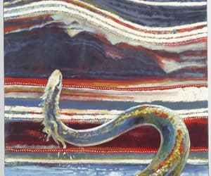 snake, austral mitology, and wagyl image