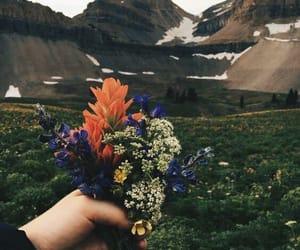 adventure, aesthetic, and boquet image