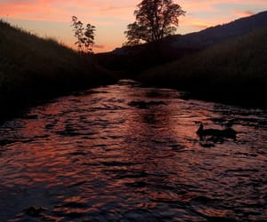 bavaria, creek, and evening image