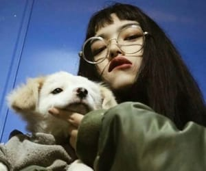 aesthetic, korean, and dog image
