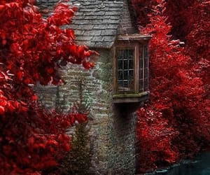 red, autumn, and house image