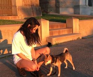 dog, female, and girl image