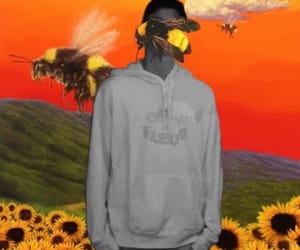 album cover, sunflowers, and tylerthecreator image
