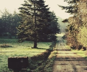 dirt road, green, and trees image