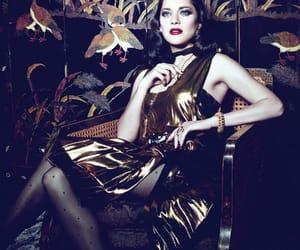 editorial, fashion, and marion cotilard image
