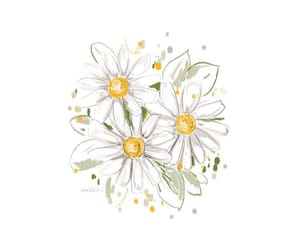 art, daisies, and daisy image