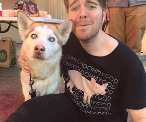dawson, shane, and dog image