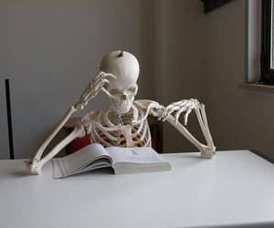 skeleton, book, and medicine image