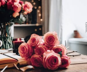 pink roses image
