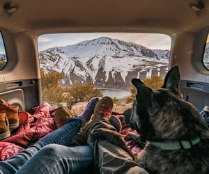 adventure, travel, and love image