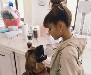 ariana grande, dog, and ariana image